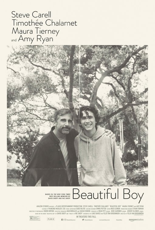 Beautiful Boy Official Movie Poster